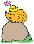 Hedgehog Nicky